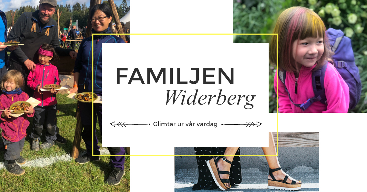 Widerberg Family Blog